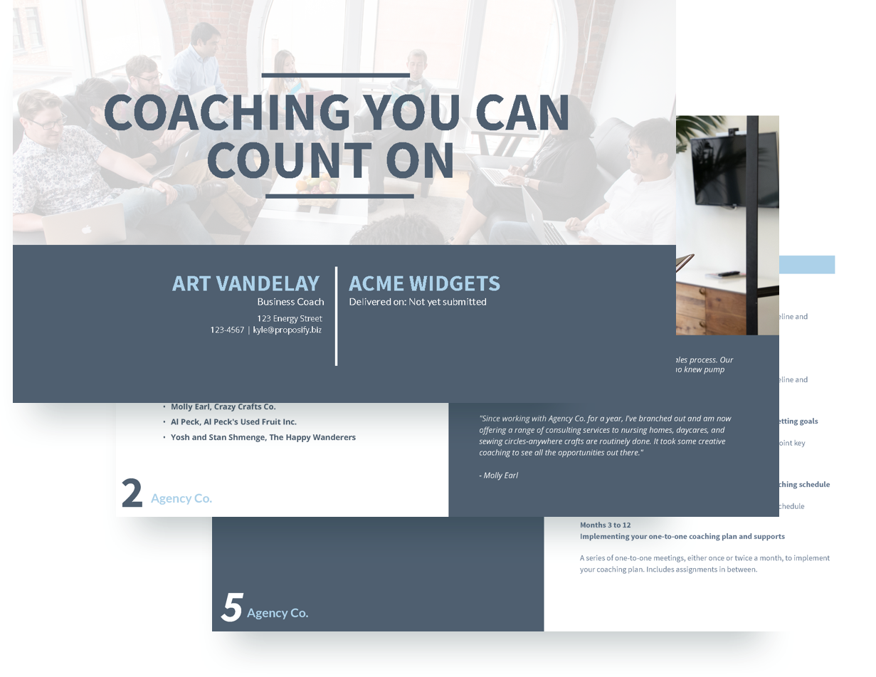 Executive coaching proposal template free sample proposify executive coaching proposal template accmission Images